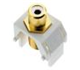 WP3461WH - Rca to WH F-Connector - Pass & Seymour/Legrand