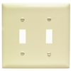 TP2I - 2G Switch Plate - Pass & Seymour/Legrand
