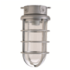 VG15 - 100 Series Globe Glass Clear - Hubbell Industrial Lighting